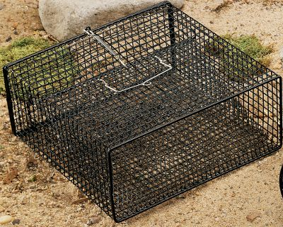 Fishing The vinyl-coated steel mesh in this trap ensures lasting durability. It has an easy access sliding mesh door, and the black color blends into the natural environment. Measures: 18 L x 12 W x 8 H. Size: 18X12X8. Color: Natural. - $25.89