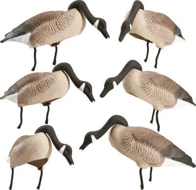 Hunting Thanks to an aerodynamic design, theres no need to reset these decoys. Perfectly balanced on stakes, these feeding-position decoys turn to face into the wind. Light gusts give them waddling movements. Lifelike 3/4 shell gives a full-body appearance. Easily stackable for transportation and storage. Includes stakes. 25 long. Per 6. - $89.99