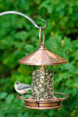 Camp and Hike Enjoy watching birds as they feed in this classic perch-style bird feeder. Its crafted of copper and Venetian bronze to give it a unique look. A perfect gift for bird watchers. Dimensions: 14.5H x 9W.Weight: 9 oz. Type: Bird Feeders. - $79.99