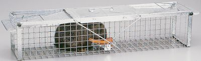 Hunting Havahart has always been the recognized brand name for live animal cage traps. These traps provide you with solutions for the control of nuisance animals including squirrels, raccoons, rabbits, mice, skunks and cats to name a few. Fabricated from high tensile wire mesh with steel reinforcements for long life. Traps are open on both ends to provide extra confidence to target animals contemplating entry. Galvanized materials are rust and corrosion resistant. Comes fully assembled. Instructions and tips on baits and trap setting are included. Color: Rust. Type: Live Animal Traps. - $29.88
