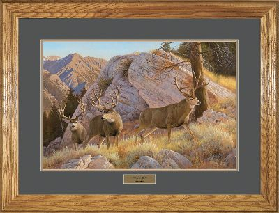 Hunting Wildlife prints of this exceptional quality and price are truly a rare find, and make an excellent gift for any sportsman or art aficionado. Meticulously produced from the original works by renowned artist Hayden Lambson, these prints capture all the grace and charm of North Americas most endeared wild animals. Each comes with archival-quality double matting, a complementing solid-oak frame and a brass nameplate. Each is signed and numbered by Lambson. Limited-edition prints. 27 x 35 framed. Available: Over The Top. - $99.99