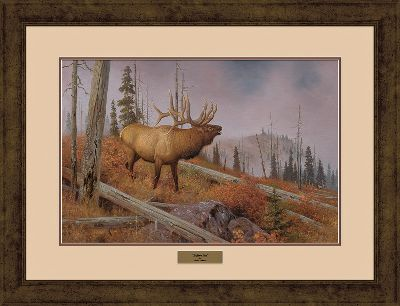 Hunting Wildlife prints of this exceptional quality and price are truly a rare find, and make an excellent gift for any sportsman or art aficionado. Meticulously produced from the original works by renowned artist Hayden Lambson, these prints capture all the grace and charm of North Americas most endeared wild animals. Each comes with gallery glass, archival-quality double matting, a complementing solid-oak frame and a brass nameplate. Each is signed and numbered by Lambson. Limited-edition prints. 7 x 35 framed. Available: Above Camp. - $99.99