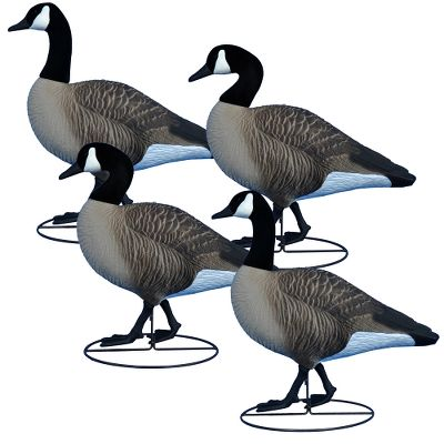 Hunting These Higdon Outdoors Alpha Full Body Canada Goose Decoys are the most detailed and anatomically correct decoys available. The realism of the lifelike full-color design will attract even the highest-flying flocks. Once assembled, the decoy, flocked head and base system act as one complete unit, making for easy setup and tear down. The unique base system allows for natural movement, even in a slight breeze. Tru-Sentry pack contains four Tru-Sentry heads. Tru-Walker pack contains two alert walker heads and two natural walker heads. Tru-Feeder pack contains four Tru-Feeder heads. Per 4. Dimensions: 24 from breast to tail. Available: Tru-Sentry, Tru-Walker, Tru-Feeder. Color: Natural. - $139.99
