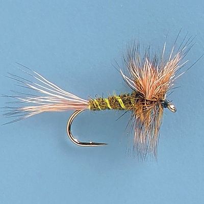 Flyfishing The rough water answer to the Green Drake hatch. Green and yellow segmented abdomen looks realistic while the bushy hackle keeps it afloat in the roughest conditions. Per 3. Sizes: 10 and 12. Color: Green. - $4.49