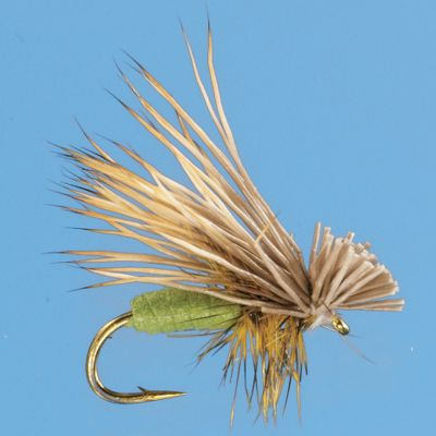 Flyfishing The Better Foam Caddis features a unique foam body that rides high and stays on top. Per 2.Sizes: 14, 16, 18.Color: Olive. - $4.69