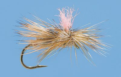 Flyfishing The effectiveness of a caddis pattern with the enhanced visibility of a parachute. Keep these in your box for evening caddis hatches. Per 3. Sizes: 12, 14, 16. Colors: Tan, Olive. Color: Olive. Type: Dry Flies. - $3.88