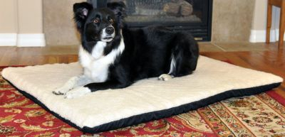 Hunting The extra-thick, thermo bed delivers soothing heat to ease tired muscles and relieves the pain and stress of worn joints. Unique, dual thermostat maintains an even surface temperature of 12-15 degrees above ambient air temperature, yet adjusts to your pets body temperature when in use to prevent overheating. Two thick layers of orthopedic foam ensure even the largest dog wont bottom out this bed. To wash the bed, simply remove the heater. Recommended for indoor use. One-year limited manufacturer warranty. Imported.Sizes: Large: 27 x 37 Extra-Large: 33 x 43 - $39.99