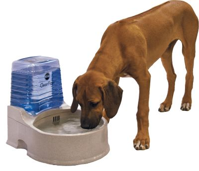 Hunting The KH CleanFlow system provides your pet with healthy, clean water. Available: CleanFlow with Reservoir A full bowl of water is charcoal-filtered up to 130 times per hour to remove impurities and keep water fresh. Bowl holds 1.4 gallons of water, while the reservoir stores an additional gallon. Simple to clean and dishwasher safe. CleanFlow Filter Cartridges Filter cartridges are carbon-infused to remove odors. Microfiber fabric captures the tiniest particles and bacteria. Filters can be reused for up to two months when rinsed regularly. Per 3. Type: Dog Bowls. Med Clean Flow Unit. - $49.88