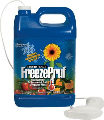 Camp and Hike Developed scientifically by skilled botanists, FreezePruf eco-safe spray improves healthy plants natural cold tolerance by 2 to 9. Biodegradeable formula is rain- and snow-resistant and lasts up to four weeks with normal precipitation. Ideal for fruit and vegetable plants. Available: 1-qt. Ready-To-Use FreezePruf 1-gal. Ready-To-Use FreezePruf 1-gal. Concentrated FreezePruf Size 1 Qt Ready To Use. - $6.88