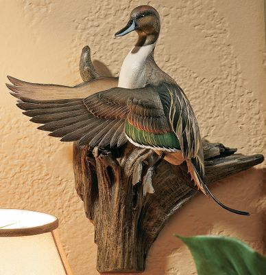 Hunting The sight of a pintail preparing to land in a decoy spread is an image that brings joy to a waterfowler's heart. Hang one of these incredibly lifelike cast-resin sculptures on your wall, and you'll be able to experience that feeling every day throughout the year. Each is a true piece of art, equivalent to an actual mounted flying duck in style and detail. Imported. Dimensions: 17 W x 16 H. - $169.99