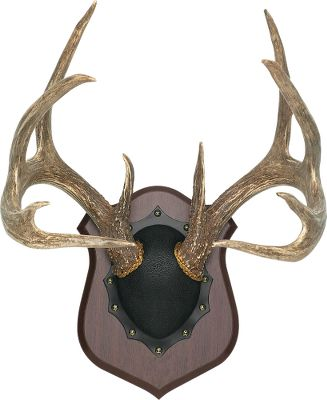 "Hunting Mount your deer, elk or antelope horns easily and inexpensively. Requires no special training or skills. With the new advanced, simplified methods and materials, you ll get a professional mount without paying a professional price. Elk kit horn cap is brown and embossed with a bull. Also includes a coupon to receive a 1"" x 3"" brass trophy plate, with up to three lines of lettering for $5.95 postage paid.Kit includes: Grained-vinyl horn cap, walnut-veneer plaque and all hardware. Models: Antelope - 12"" x 12"" x 5/8"" Deer - 10"" x 13""x 5/8"" Elk - 16"" x 15-1/2"" x 5/8"" - $44.88"