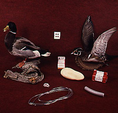 Hunting Get great results whether your favorite waterfowl specimen is a large mallard or canvasback, or something smaller such as a brightly colored wood duck. Complete kit with full instructions, form, preservatives and accessories.Available: Large Kit. - $24.88