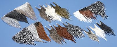 Flyfishing Each of these multi-packs contains strips of skin with just the right sized hackle you need for tying your favorite dry flies. The medium-sized pack includes well over 300 feathers between the three colors. Sizes: 12-16. Colors: (025)Olive/Cream/Medium Dun, (155)Grizzly/Brown/Cream, (611)Grizzly/Brown/Light Dun, (777)Dun/Light Dun/Dark Dun, (811)Badger/Cream/Black, (888)Grizzly/Brown/Medium Dun. Color: Olive. Type: Feathers. - $19.88