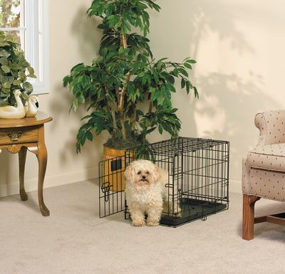 Hunting The crate that grows with your pup. The divider panel can easily be set to start a young dog with a small, comfortable space that will make it feel safe and secure and then can be moved as it grows and requires additional room. The crate has a durable, black electro-coat finish, so it will easily last a lifetime. Safe and secure slide-bolt latches ensure your dog will not escape. Includes an easy-to-clean plastic pan and heavy-duty carry handles. Sizes: 22L x 13W x 16H. Weight: 10 lbs. 24L x 18W x 21H. Weight: 16 lbs. 30L x 21W x 24H. Weight: 21 lbs. 36L x 24W x 27H. Weight: 30 lbs. 42L x 28W x 31H. Weight: 42 lbs. 48L x 30W x 33H. Weight: 48 lbs. Size: 22. Color: Black. Type: Pet Crates. - $39.99