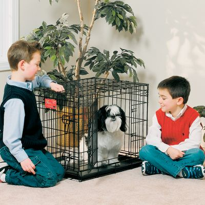 Entertainment A perfect kennel for your dog from its puppy days to adulthood. Its equipped with practically every feature necessary for housebreaking and housing your dog, and is collapsible which makes it easy to store and transport. An included divider panel adjusts the kennels internal space to fit your dogs size as it grows -- this also helps shorten housebreaking time because it keeps your puppy from relieving himself in one end and sleeping in the other. It has a durable, satin-black finish and ABS plastic base pan that are easy to clean. All the corners are rounded for added safety and comfort. Two doors allow for easy entry. Safety-bolt latches on both doors keep your pet safely secured inside the kennel and off your furniture. Setting up and taking down this kennel is easy with its fold-and-carry travel design. One-year warranty. Available: 22 Dimensions: 22L x 13W x 16H. Weight: 10 lbs. 24 Dimensions: 24L x 18W x 21H. Weight: 16 lbs. 30 Dimensions: 30L x 21W x 24H. Weight: 21 lbs. 36 Dimensions: 36L x 24W x 27H. Weight: 30 lbs. 42 Dimensions: 42L x 28W x 31H. Weight: 42 lbs. 48 Dimensions: 48L x 30W x 33H. Weight: 48 lbs. Size: 22. Type: Pet Crates. - $39.99