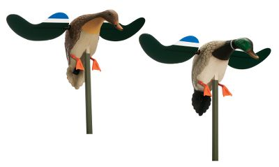 Hunting Double any spreads duck-attracting power with this money-saving Cabelas exclusive. It features drake and hen Baby Mojos for the ultimate in landing-pair realism. Life-size body and lightweight, magnetically attached wings make it a space-saving choice for a wide range of hunting applications. 4-ft. mounting stake included with both. Runs on four AA batteries (not included). Type: Mallard Duck Decoys. - $89.99