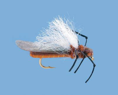 Flyfishing From below trout will believe its a stonefly. From above youll be able to key in on the white wings and be ready for the strike. Imported. Per 2. Size: 6. Color: White. - $4.49