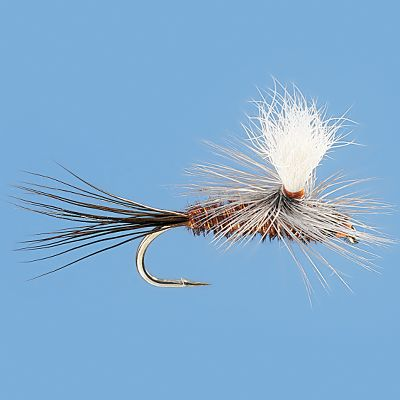 Flyfishing Parachute Pheasant tails imitate many species of aquatic insects and work on a lot of rivers. The parachute makes it easier to see and track as it floats downstream. Per 3. Sizes: 12, 14, 16, 18. Type: Dry Flies. - $4.89