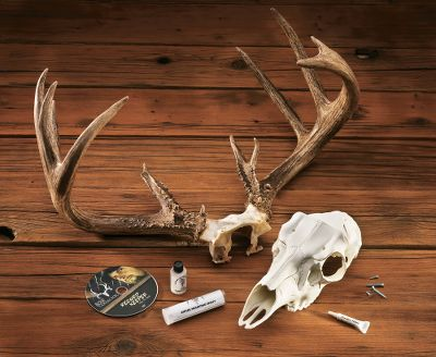 Hunting This kit uses the deer's original skull plate so you can retain your buck's trophy or record-book status and still have it mounted. This all-inclusive kit contains: epoxy putty, screws, filler, paintbrush, top touch-up paint and detailed instructions. - $44.99