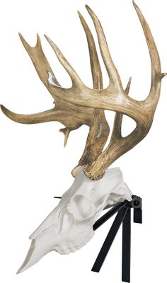 Hunting Display your European mount with this adjustable positioner. Available: Deer, Elk. Type: Antler Mounting Kits. - $12.99