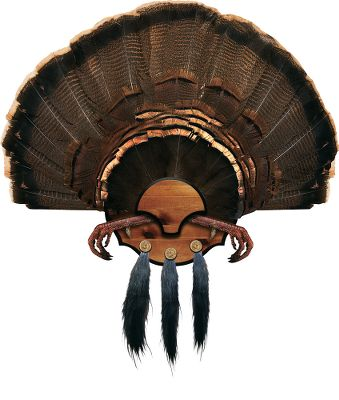 Hunting Combining economy and ease of use, this mount features a handsome, injection-molded plaque with a knotty-pine finish. Mounts the fan, up to three beards and feet (optional). - $14.88