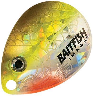 Fishing Stamped from solid brass, these blades also use a deadly new holographic Baitfish-Image designed for superior flash and deception. Per three.Colors: (007)Alewife White, (021)Firetiger, (056)Gold Shiner, (066)Silver Shiner, (257)Rainbow Chub, (542)Gold Perch, (545)Sunrise,(402)Clown. Type: Colorado Blades. Color Gold Perch. - $1.88