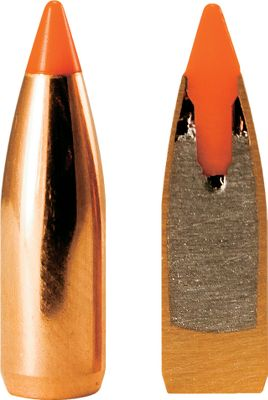 These bullets deliver consistent performance. The Ballistic Tip Varmint's ultra-thin jacket mouth and lead core assures expansion at either end of the velocity scale. The uniform, gradual thickening of the jacket wall at the bullet's mid-section is designed to keep this bullet together until impact at any velocity. The heavy jacket base prevents bullet deformation during firing. Nosler's Solid Base boat tail design, combined with the polycarbonate tip, increases long-range efficiency. .6mm, .243 diameter. Per 250. - $56.99