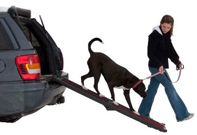 Hunting Lightweight, affordable pet ramp is suitable for use in all weather conditions. Carpet tread is removable and machine washable. Ramp folds in half for storage and has handle for easy transportation. Rubber grips ensure ramp stays put while in use.Dimensions: 66L x 16W x 4H.Weight: 17 lbs.Weight capacity: 150 lbs. - $89.99