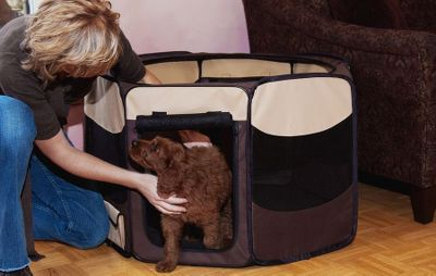 Hunting A great way to safely contain your pet. Its vented on all sides for optimal airflow and the top can be left open or closed. Ideally suited for travel, it folds flat for convenient storage. 600-denier nylon side panels withstand rugged use. Side-storage pockets are strategically placed for holding pet items. Extremely easy setup and takedown. Imported. Sizes: 29, 36, 46. Colors: Sahara, Sage. Size: 29. Color: Sage. Type: Pet Crates. - $69.99