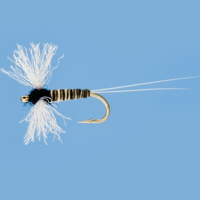 Flyfishing Designed to match a Trico spinner fall, spent wing flies ride low in the water and have the horizontal wings of a dead mayfly. They are perfect for back eddies and pools where spinners tend to collect and large trout tend to cruise for an easy meal. Per 3. Sizes: 18, 20, 22. Color: (003)Black. Color: (003)Black. Type: Dry Flies. - $4.99