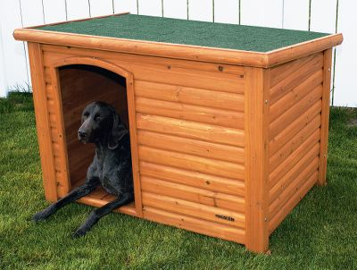 Extreme Improve the appearance of your backyard and provide your dog with a sturdy, weather-resistant shelter with the Extreme Outback Log Cabin Dog House. Constructed of solid fir wood with a cedar-colored stain, this dog house has a slanted asphalt shingle roof that drains water off the back edge. And waterproof plastic feet raise the log cabin off the ground to ensure the floor, and your dog, stays dry. The entrance is off-center, giving your dog superior shelter from the wind and the elements and allowing him to turn around easily. You can assemble the house in three simple steps with a screwdriver. Available: Medium - 45-1/2L x 26-1/2W x 27-1/2H. Large - 45-1/2L x 33W x 33H. Size: LARGE. - $269.99