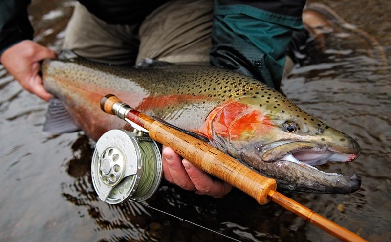 рыбалка на камчатке на удочку