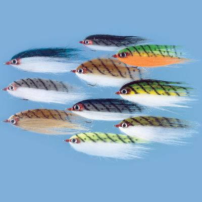 Flyfishing Rainy's baitfish patterns are ultrarealistic and extremely durable. This selection will give you a color and size to entice everything from tarpon to bluefish. Includes 10 CF Baitfish: Mackerel (Size 2/0), Gray/White (2/0), Bronze/Tan (2/0), Tuxedo (2), Mullet (2/0) Blue White (2/0), Chartreuse/White (2/0), Firetiger (2/0), Herring (2/0), Olive/White (2/0) and fly box. Color: Chartreuse. Gender: Male. Age Group: Adult. - $42.99