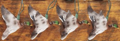 Hunting Even if you didn't have any ducks work you at the blind, you will have 10 ft. of them hanging around your place when you get home. These lights will make a great addition to any room in your house or at your hunting cabin. Imported. Length: 10 ft. Type: String Lights. - $19.99