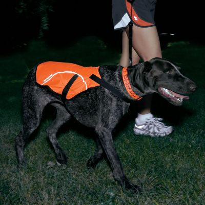 Hunting Never lose sight of your four-legged friend again. Features Ruffwear's latest innovation high-visibility. Fabric is comfortable and adds assurance that your dog is visible in all conditions. Durable, water-resistant, ripstop nylon shell. 3M Scotchlite reflective trim. Imported.Sizes: S-L.Color: Blaze Orange. - $41.99