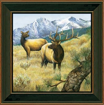 Hunting Visitors to your home will know that nature is an important part of your life when this scene greets them. Each canvas print is hand-personalized with the names or initials of your choice at no additional charge. Solid wood frame. Comes with a sawtooth hanger on the back. Prints are not framed behind glass. To ensure they retain their original colors, each is sealed with a UV-resistant coating. For indoor use. Allow up to two weeks for delivery. Made in USA. Framed dimensions: 14 x 14. - $99.99