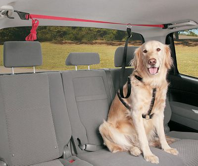 Auto and Cycle Give your pet the freedom to move in your bench seat area, cargo area, or pickup truck bed without having them jumping in your front seat. The Solvit PupZip installs in seconds simply attach the two hooks to vehicle attachment points, adjust the strap to length and attach the leash to your pet. Unique design fits all vehicles and all size pets. One-year manufacturers warranty. Imported. NOTE: The PupZip will not prevent pet movement in the case of a sudden stop or accident. Dimensions: 72L x 1W. Weight: 1 lb. - $18.74
