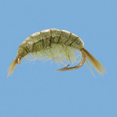 Flyfishing These flies resemble a freshwater crustacean found along weedbeds in lakes and rivers. Per 3. Sizes: 14, 16, 18. Colors: Olive, Tan. Color: Olive. Type: Wet Flies. - $5.79