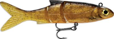 Fishing Fool the fish with this ultralifelike swimbait that features a natural profile and realistic action thanks to the multisegmented body and holographic insert. Soft PVC material encourages fish to hold on, yet retains its shape and durability with a reinforcing mesh and hard inner core. 3-D holographic eye provokes violent strikes. Black-nickel VMC hook is sharp right out of the package. Per each. Sizes: 4, 5, 6. Colors: (001)Black Silver Minnow, (676)Rainbow Trout. Color: Natural. Type: Rigged Plastic Swimbaits. - $4.99