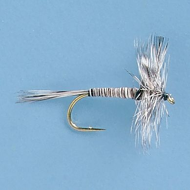 Flyfishing The Mosquito, while it does not really represent an actual mosquito, does work well as a general searching dry pattern or during a Callibaetis hatch, also works well as a midge pattern. Per 3. Sizes: 12, 14, 16, 18. - $5.39