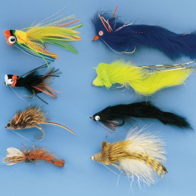 Flyfishing Includes eight of the hottest bass flies you will ever see: Dahlbergs Diving Bug Dahlbergs Rabbit Strip Diver Whitlocks Mouserat Whitlocks Softshell Crayfish Whitlocks Deer Hair Bug (2) Whitlocks Hareworm Whitlocks Harewater Pup Available: Assortment With Box. Type: Fly Assortments. - $19.99