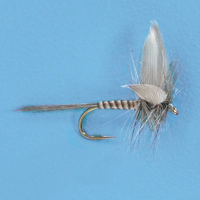 Flyfishing A quill bodied version of the Blue Dun Mayflies found throughout the northeast and central U.S. Per 3. Sizes: 16, 18, 20. Color: Blue. Type: Dry Flies. - $5.49