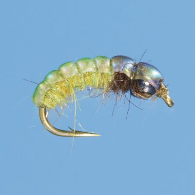 Flyfishing A fast-sinking Czech-style nymph. They are especially effective when fished in a multiple-fly setup in fast to medium-fast water. Per 2. Sizes: 8, 10, 14. Color: Psycho Rhyco. Color: Psycho Rhyco. - $5.99