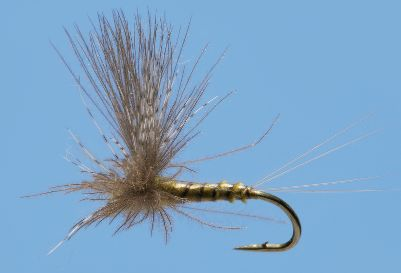 Flyfishing This CDC dun dry fly is an extremely versatile pattern that you can fish in everything from spring creeks to soft- and fast-water currents. Per 2. Sizes: 16, 18, 20. Color: Blue Wing Olive. Color: Blue Wing Olive. - $3.79