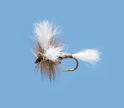 Flyfishing Dry-fly attractor pattern that should be a part of any fly-fishermans assortment. Its larger profile increases its visibility to distant trout. Per 2. Sizes: 12, 14, 16. Type: Dry Flies. - $3.88