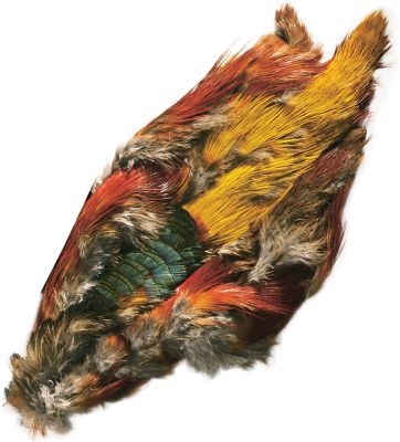 Flyfishing TheGolden Pheasantskins provide a myriad of colorful feathers. Does not include the head or tail. Type: Feathers. - $12.99