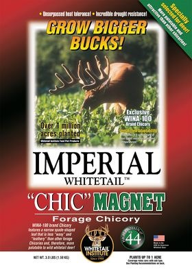 Hunting Chic Magnet is specially selected for whitetail food plots in climates where periodic heat and drought during late summer and early fall slow down the production of other forages. Chic Magnet is tender, and it cuts down on the waxy, leathery texture of other chicories, which makes it more palatable for deer. 44% protein helps maximize health and antler growth.Available: 3 lbs. plants 1 acre - $34.99