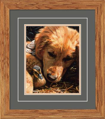 Bring a little puppy comedy into your lodge. Open edition from Great Northern Art Deluxe Collection. Medium-oak molding; double matted. Wild Wings exclusive. Image dimensions: 8H x 10-1/4W. Frame dimensions: 18-3/4H x 16-1/2W x 1-1/2D. - $49.99