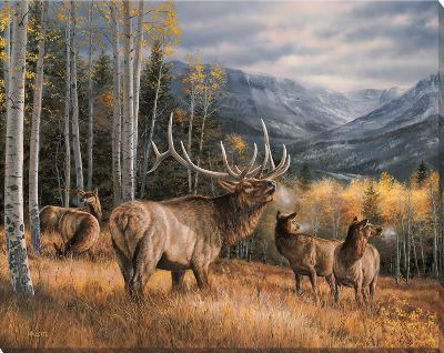Gicle-printed with fade-resistant inks, the Wild Wings Wrapped Canvas Art boasts the texture and character of an original painting at a fraction of the cost. Produced from original paintings by some of the most well-known outdoor artists. Unframed. Canvas comes ready to hang. Made in USA. Available: Royal Mist Elk (16H x 20-1/2W x 1-1/8D) Meadow Music Elk(19H x 24W x 1-1/8D) Color: Mist. Type: Canvas. - $69.99