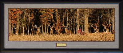 Camp and Hike The Six Pack is the first release of a Series of Prints The Whitetail Super 6 Series by Digital Artist George Barnett. Each scene is a Digital Composite that includes six huge whitetail bucks previously showcased in George Barnetts outstanding Calendar, the Whitetail Super Bucks. The first release in this series, The Six Pack, is a panoramic scene composited from over 90 images. Over 300 hours went into producing this art work, which is illustrated in totally seamless, stunning detail. Each outstanding buck was hand selected for inclusion in the print. They range in size from 230 to 280 gross BC inches. In addition, a portion of the proceeds from the sale of this image will go directly to Camp Patriot, an organization that gives disabled US military veterans an opportunity to participate in life-changing outdoor adventures. This stunning scene will complement your home or office. Handsome wood frame, mattes, glass and hanger included. A portion of the proceeds are donated to Camp Patriot, an organization that gives disabled veterans the opportunity to experience outdoor adventures.Frame Dimensions: 19H x 43W. - $149.99